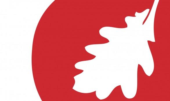 Logo Viamova | portfolio Studio MK
