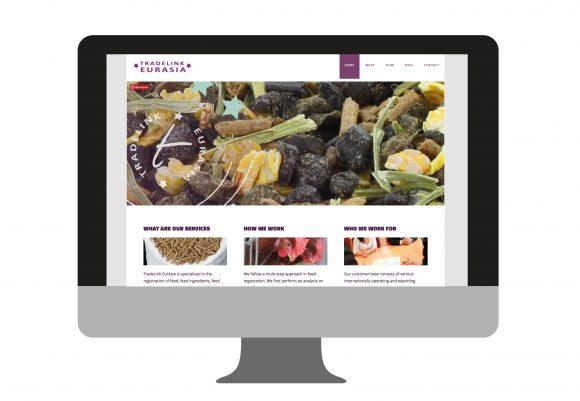 Website Tradelink Eurasia | portfolio Studio MK
