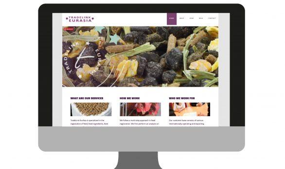Website Tradelink Eurasia   portfolio Studio MK